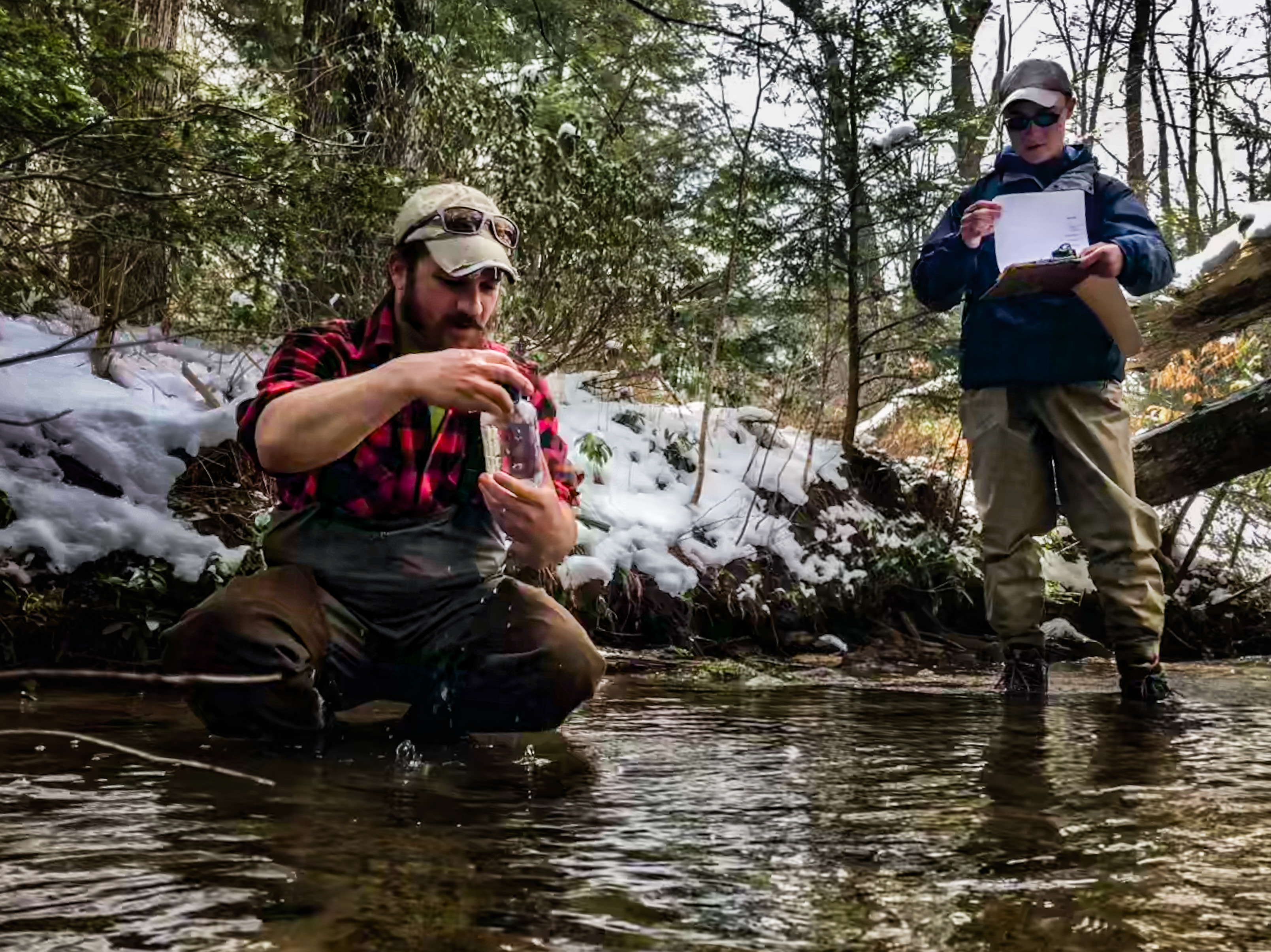 Citizen scientists getting it done